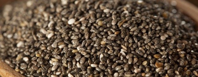 Chia Seeds Nutrition and Recipes